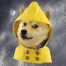 单身狗天气