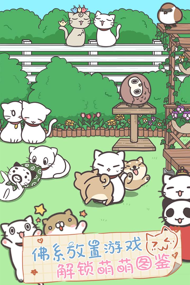 猫咪饲养日常软件截图3