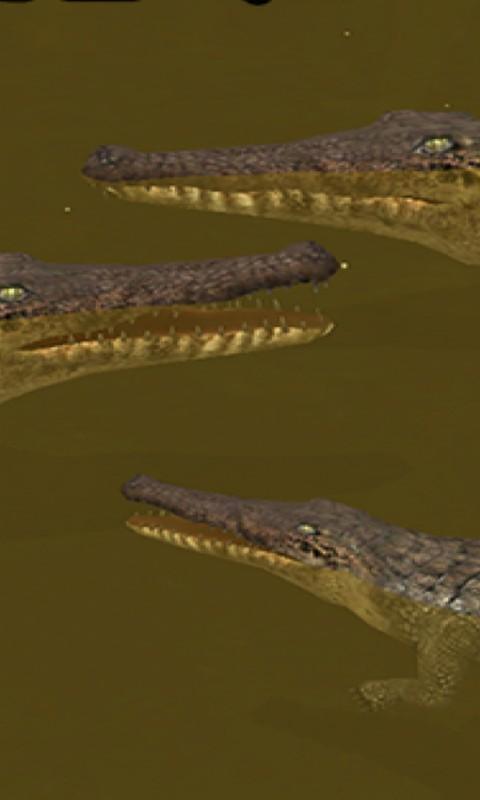 鳄鱼模拟软件截图4